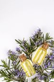 Rosemary Essential Oil In A Small Bottle. Natural Aroma Cosmetic Oil poster