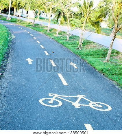 Sinuous Bicycle Path