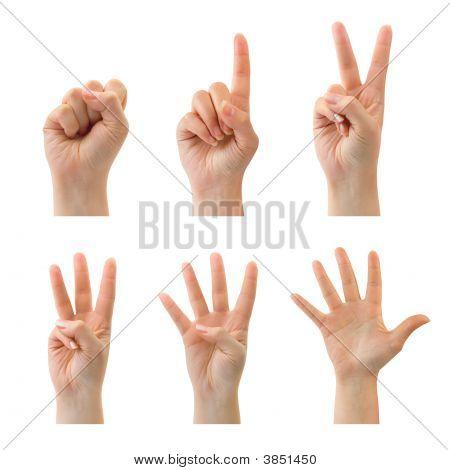 zählen Hände (0 bis 5)