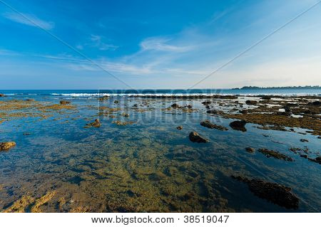Little Andaman Islands Coral Rock Tide Pools