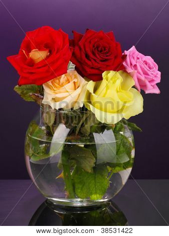 Beautiful roses in glass vase on purple background