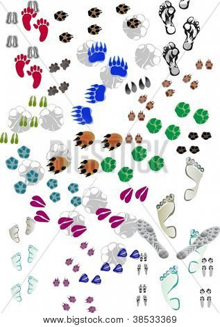 illustration with different animals and human color tracks on white