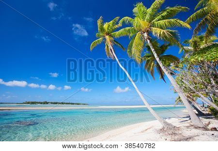 Atemberaubenden Strand auf Tikehau-Atoll in Französisch-Polynesien