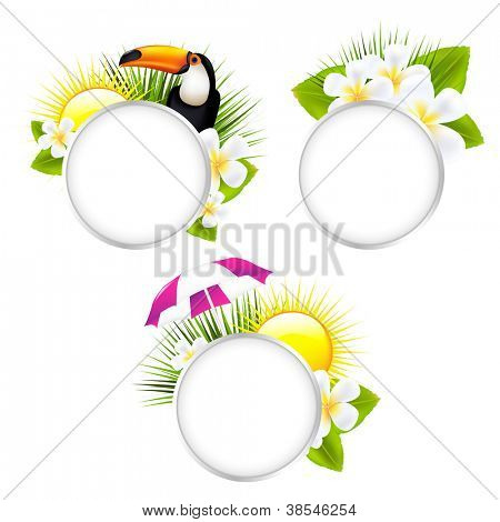3 Speech Bubble Tropical Illustrations, Isolated On White Background