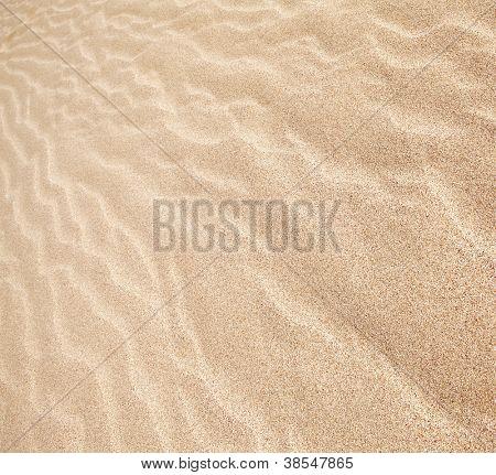 dunas de arena en el fondo