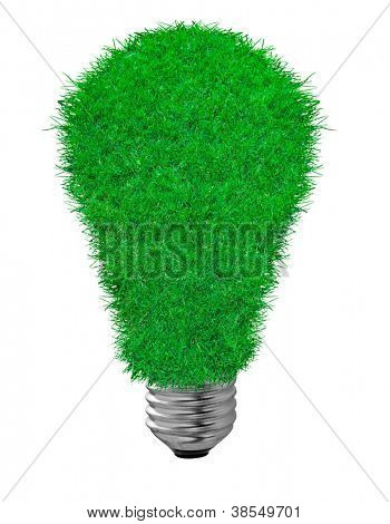 white economical  bulb on the white background. grass