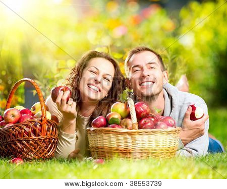 Happy People Eating Organic Apples in Autumn Garden.Healthy Food.Outdoors.Park. Basket of Apples.Harvest concept .Smiling Couple Relaxing on Grass