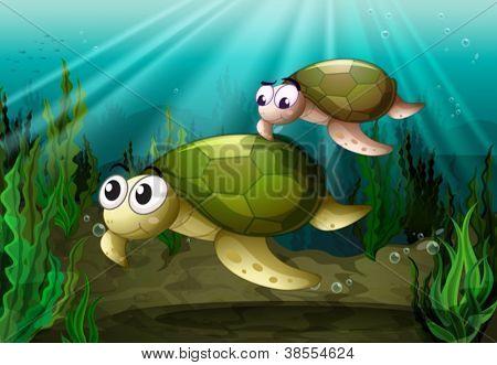 illustration of a tortoise under sea water