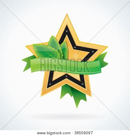 Gold star badge or icon with ribbon for your text
