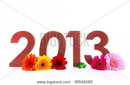 Ciphers with 2013 and flowers isolated over white background