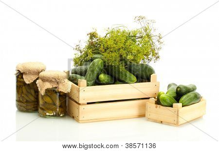 fresh cucumbers in wooden boxes, pickles and dill isolated on white