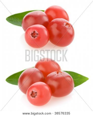 ripe cranberry isolated on white background collage