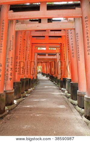 Famous shinto shrine of Fushimi Inari Taisha near Kyoto includes around 1300 orange torii gates, Japan