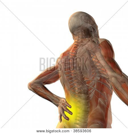 High resolution concept or conceptual 3d human male or man anatomy isolated on white background as metaphor to pain,back,body,spine,backache,medical,injury,medicine,health,hurt,painful,spinal  therapy
