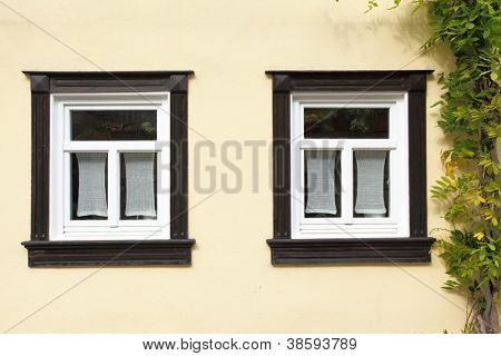 Windows of old house with ivy, Germany