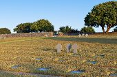 picture of hade  - Old WWII German military cemetery at Maleme of Crete island in Greece - JPG