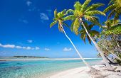 stock photo of french polynesia  - Stunning beach at Tikehau atoll in French Polynesia - JPG