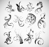 stock photo of art gothic  - Vector Ornament Flowers Vintage Design Elements - JPG