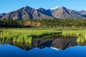 image of denali national park  - lake  in tundra in Alaska - JPG
