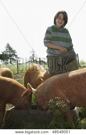 Portrait of a smiling young boy feeding pigs in sty against clear sky