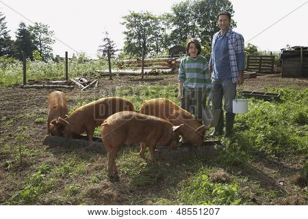 Portrait of a man and boy with pigs in the sty