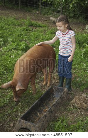 Full length of a cute girl stroking pig in sty