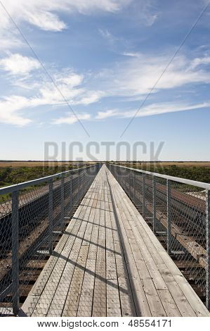 Longest Pedestrian Bridge In Canada