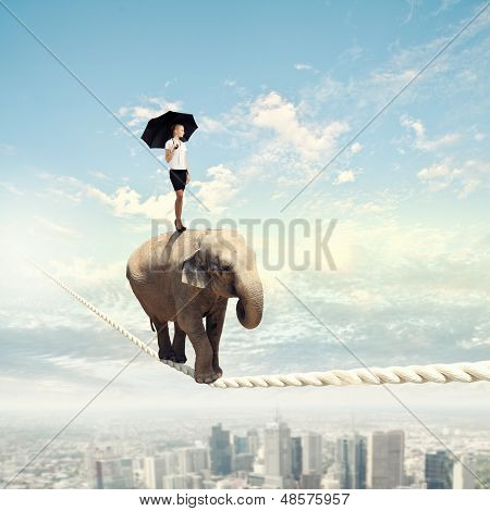 Elephant walking on rope
