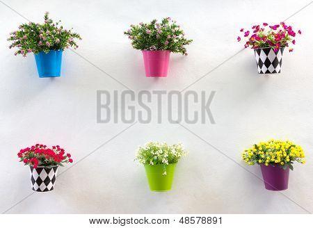 Mostrar jardinera y flores en la pared