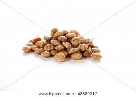 Roasted Sacha Inchi Seeds