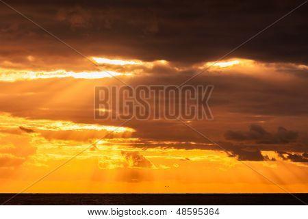 Australian Beach At Sunrise