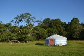 image of yurt  - Yurt  - JPG