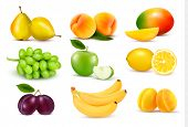 image of bunch bananas  - Big group of different fruit - JPG