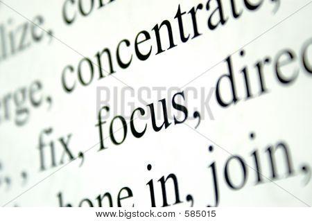 Wörter im Fokus
