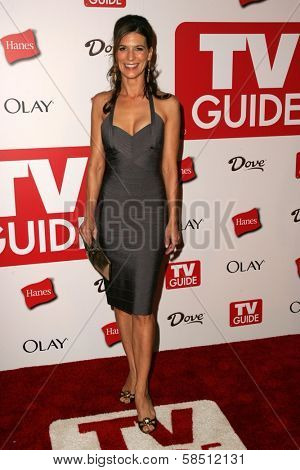 HOLLYWOOD - AUGUST 27: Perrey Reeves at the TV Guide Emmy After Party at Social August 27, 2006 in Hollywood, CA.