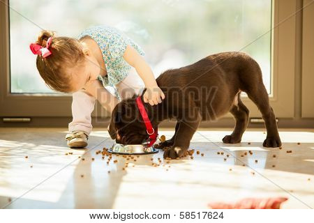 Cute little girl feeding her puppy