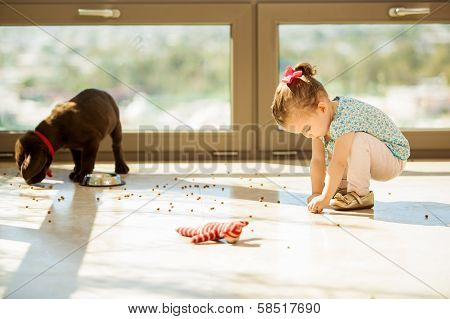 Puppy making a mess with food