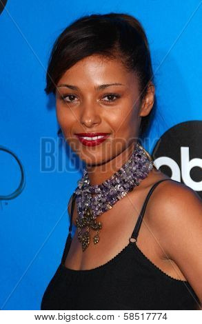 PASADENA, CA - JULY 19: Meta Golding at the Disney ABC Television Group All Star Party on July 19, 2006 at Kidspace Children's Museum in Pasadena, CA.