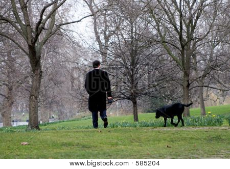Man Walks Dog