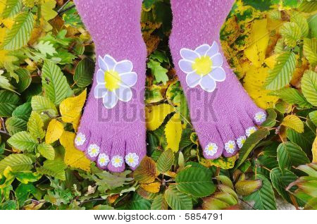 Two Legs With Socks Standing On Fall Ground