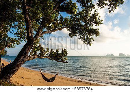 Hammock Under Leaning Tree In Southern Thailand