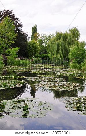The garden of the famous Painter Claude Monet