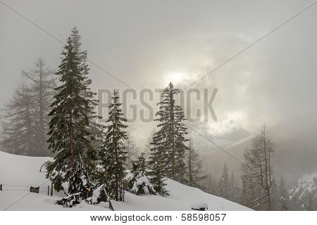 Misty Morning In Winter Mountains