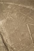 stock photo of geoglyph  - Unesco Heritage - JPG