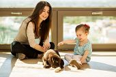foto of puppies mother dog  - Young mother and her daughter playing and hanging out with their new puppy at home - JPG