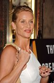 HOLLYWOOD - AUGUST 15: Nicolette Sheridan at the Los Angeles Premiere of Dirty Rotten Scoundrels on