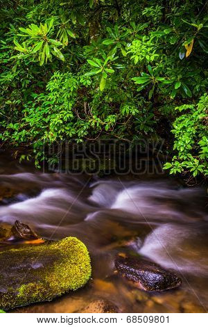 Cascades On Mingus Creek, At Great Smoky Mountains National Park, North Carolina.