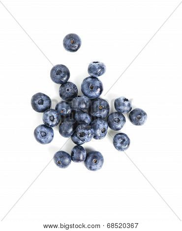 Sweet Blueberry Isolated On White Background