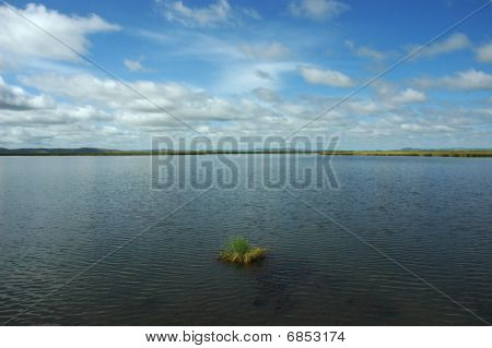 Lake in the wet land