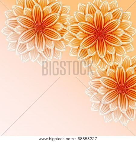 Beautiful Wallpaper With Orange Flowers